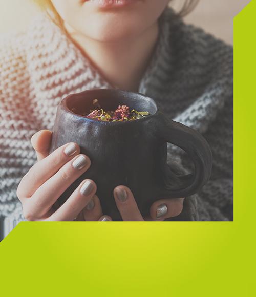 Heilpflanzen-Tees